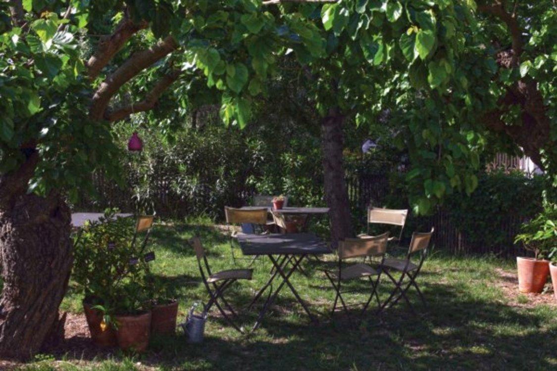 Calme aux jardins du mip echosciences provence alpes c te d 39 azur - Jardin du musee international de la parfumerie ...