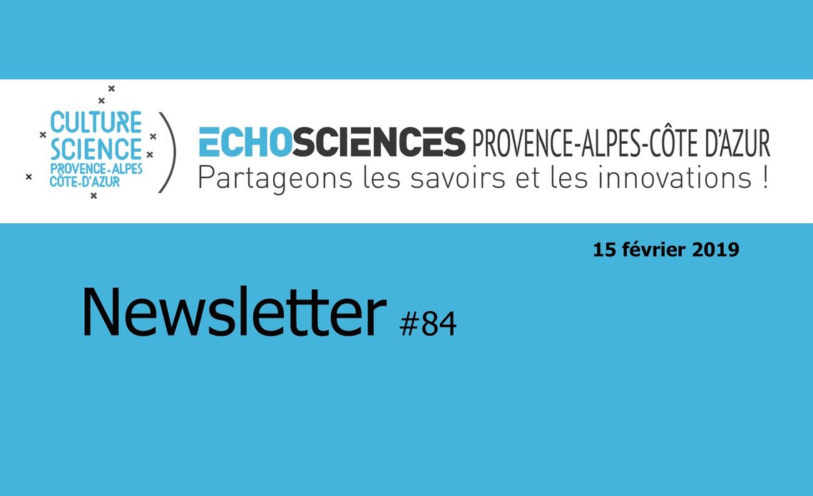 Xl newsletter p1 titre
