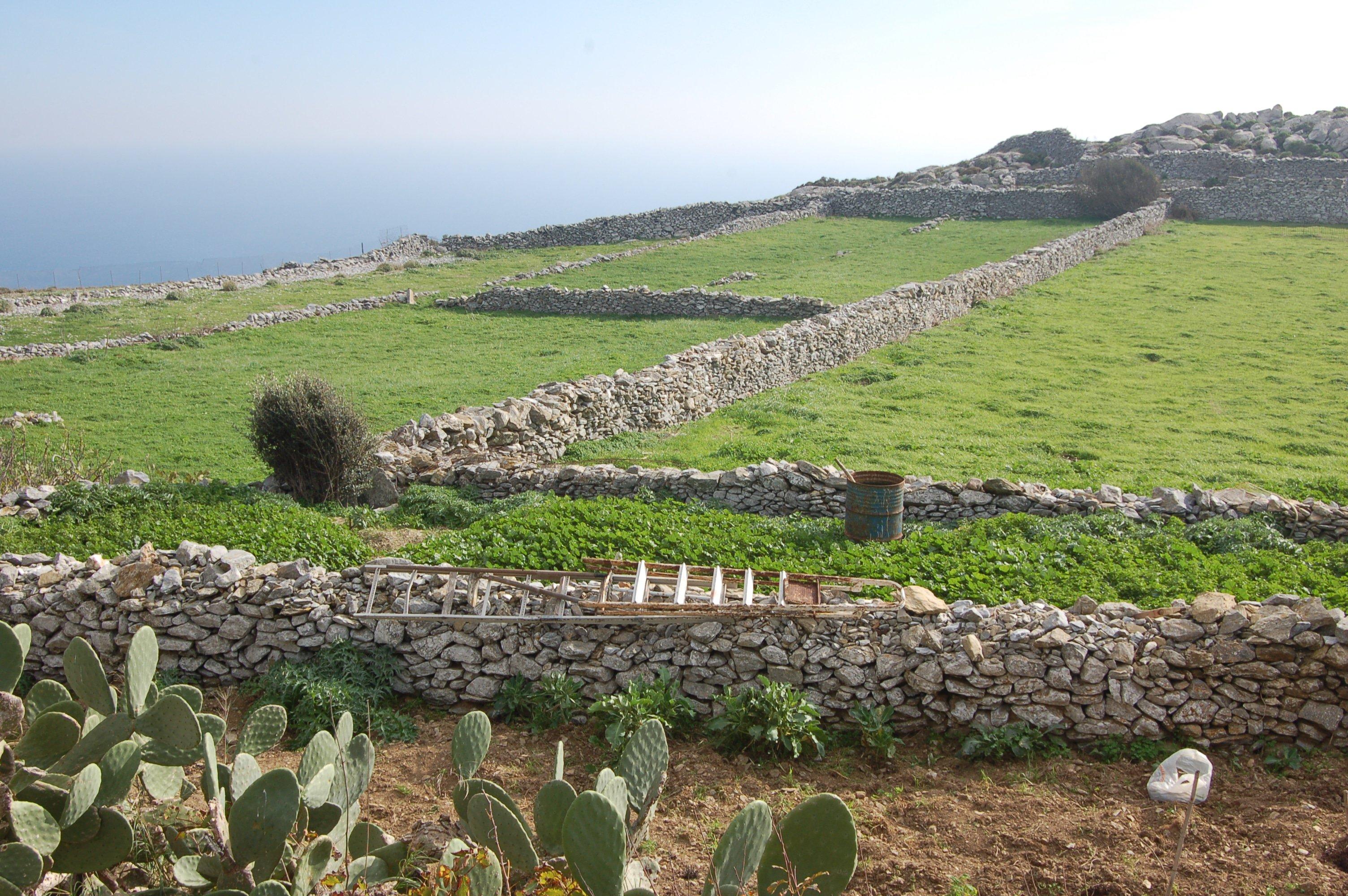 Champs et pâturages dans la campagne de l'île d'Amorgos, Grèce, 2009