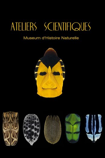 Xl ateliers scientifiques 2018   ot   1080 x1620   150 px