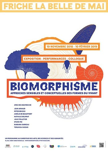Xl affiche biomorphisme recto web2510